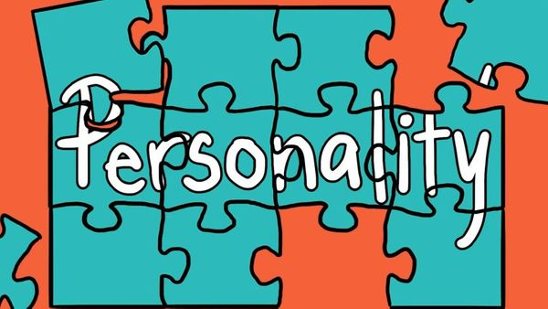 How personality assessments can help us in our personal and professional lives.